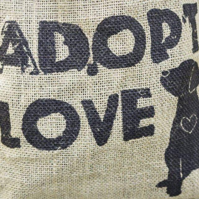Adoption - 55199087